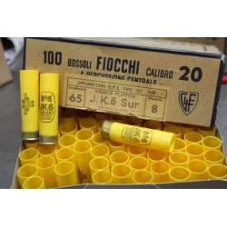 100 bossoli Fiocchi c.20 65mm